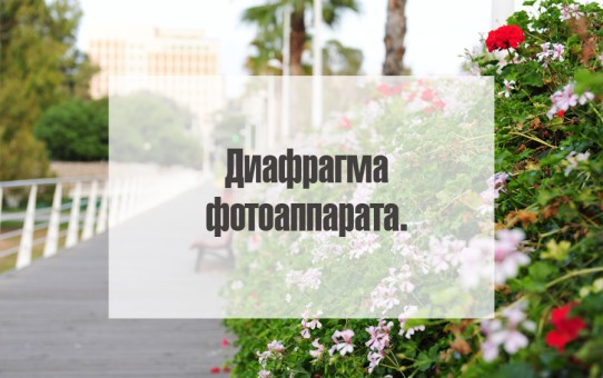 диафрагма фотоаппарата