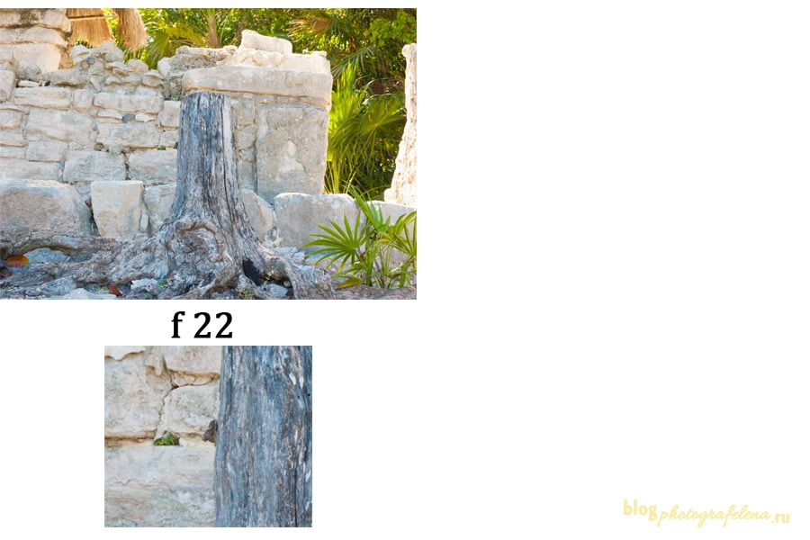 диафрагма фото пример 22