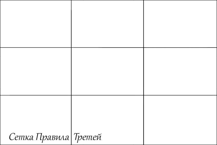 правило третей в фотографии сетка