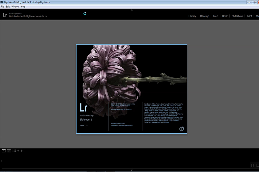обработка фото в лайтрум урок