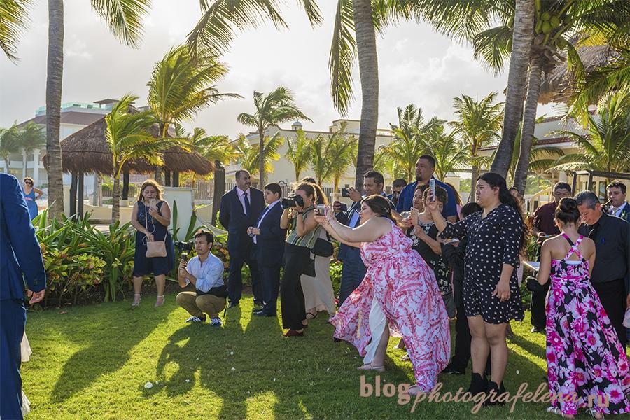 надо запретить мобильные телефоны на свадьбах