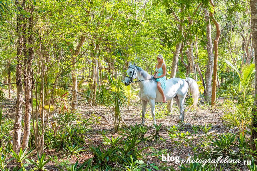 дама на лошади фотосессия летом