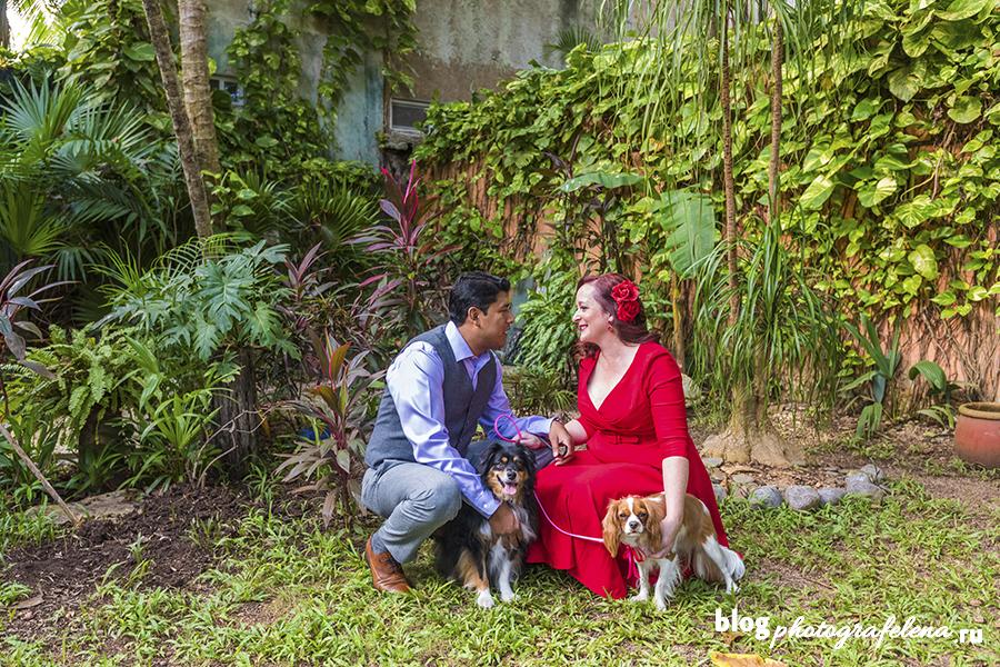 фотосессия пары с собакой