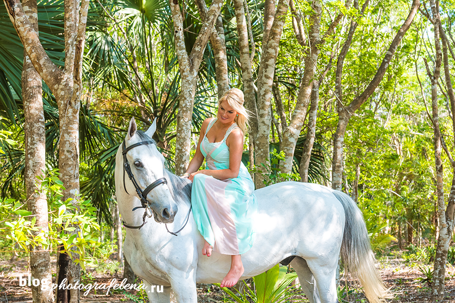 фотосессия с белой лошадью