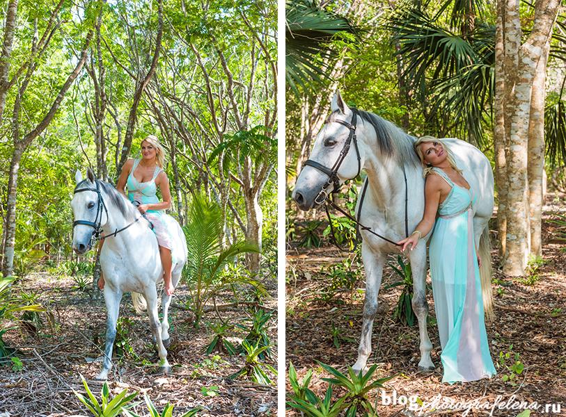 фотосессия с лошадью девушка в лесу