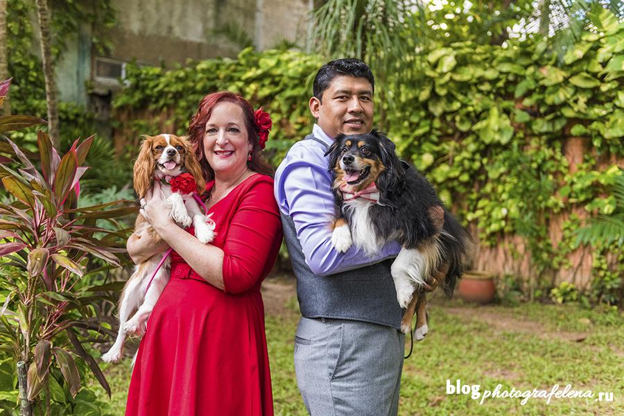 фотосессия с собаками пара