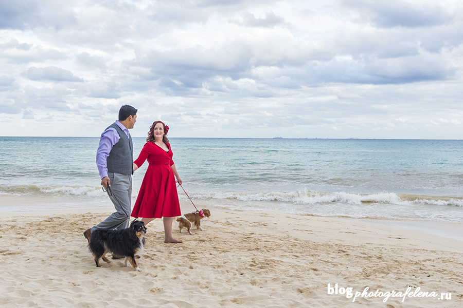 фотосессия с собакой на пляже