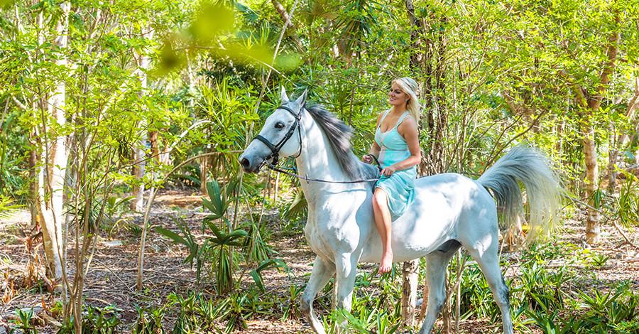 как сфотографироваться с лошадью